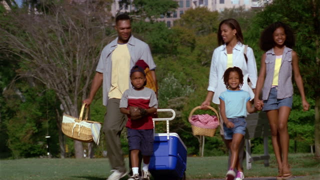 wide shot family carrying picnic baskets and cooler through piedmont park + son tossing baseball / atlanta - cool box stock videos & royalty-free footage