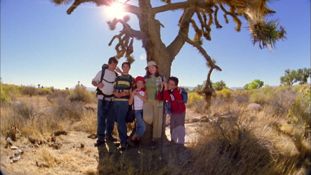 wide shot family in hiking gear posing under desert tree and looking at cam - organised group photo stock videos & royalty-free footage