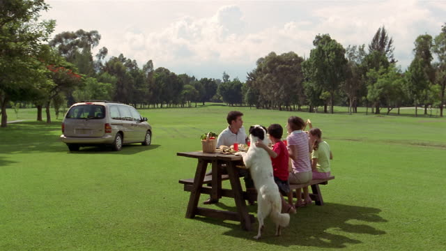 wide shot family sitting at picnic table/ dog putting paws on table/ family running to suv in rain/ mexico - picnic stock videos and b-roll footage