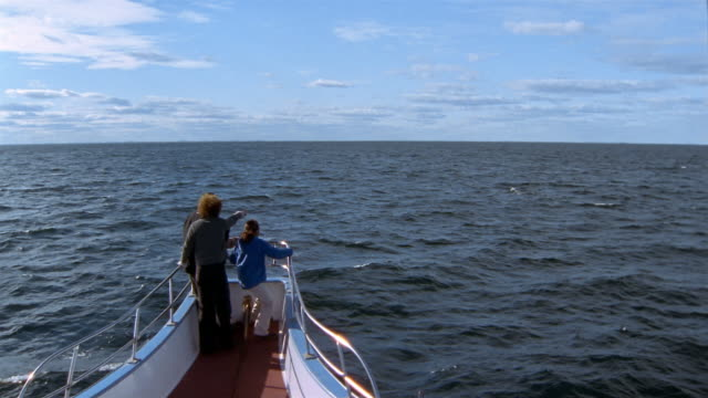 wide shot family standing on prow of boat and looking out over water - whale watching stock videos and b-roll footage