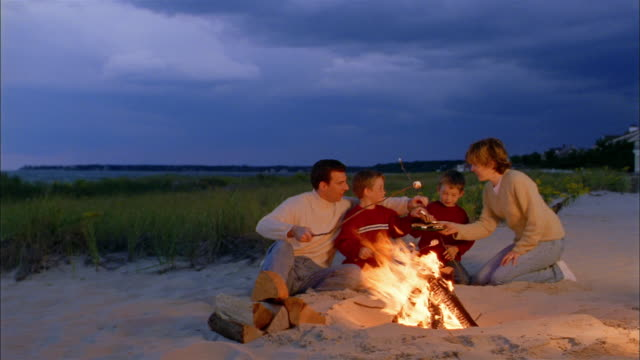 wide shot family w/twin boys roasting marshmallows on sticks / mother bringing them smores - bonfire stock videos & royalty-free footage