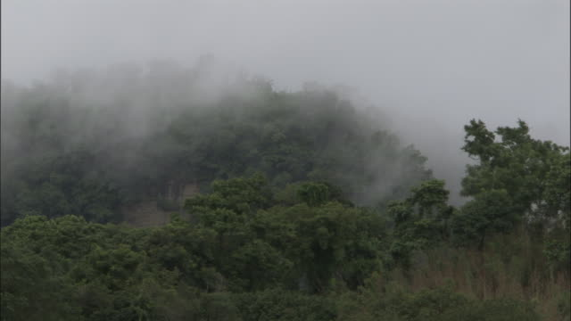 wide shot - foggy hilltop in lush rainforest / bangladesh  - hill stock videos & royalty-free footage