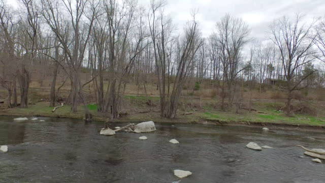 Wide shot from river toward leafless trees along the bank