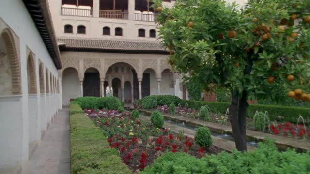 1999 wide shot fruit tree growing in generalife gardens at the alhambra/ granada, spain - etwa 13. jahrhundert stock-videos und b-roll-filmmaterial