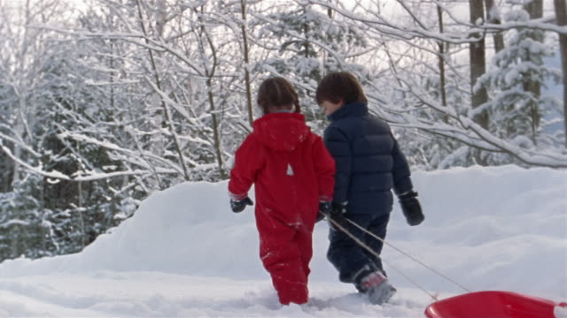 wide shot girl and boy pulling sled and walking in snow / franconia, grafton county, new hampshire, usa - mitten stock videos and b-roll footage