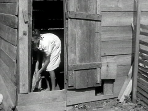 1942 wide shot girl cleaning out chicken coop/ macon, georgia/ audio - chicken coop stock videos and b-roll footage