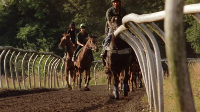 vidéos et rushes de wide shot jockeys riding horses on dirt track/ tilt down hooves on dirt track/ berkshire, england - sabot
