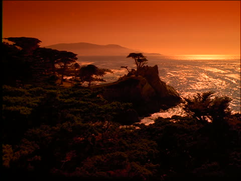 wide shot lone cypress on rocks of pebble beach, california coastline / pacific ocean in background / orange filter - nordpazifik stock-videos und b-roll-filmmaterial
