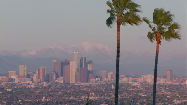 wide shot long shot Los Angeles skyline + valley with palm trees in foreground + mountains in background / California
