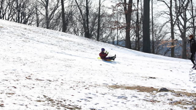 vidéos et rushes de wide shot looking through trees at young girl tobogganing down hill while dad watches - kelly mason videos