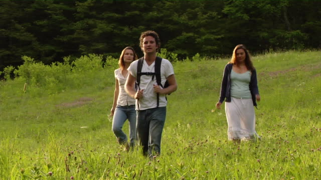 wide shot man and two women hiking through sunlit meadow - male with group of females stock videos & royalty-free footage