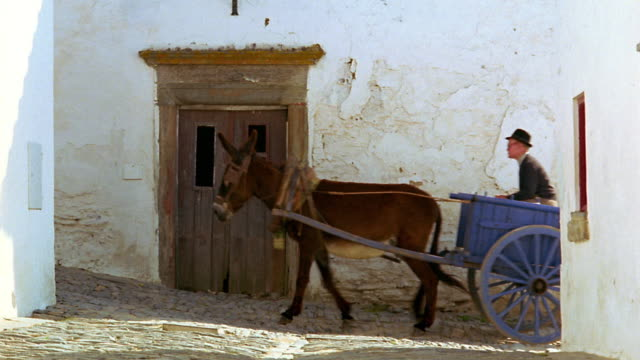 wide shot man driving cart pulled by donkey on narrow village street up hill / monsaraz, portugal - esel stock-videos und b-roll-filmmaterial