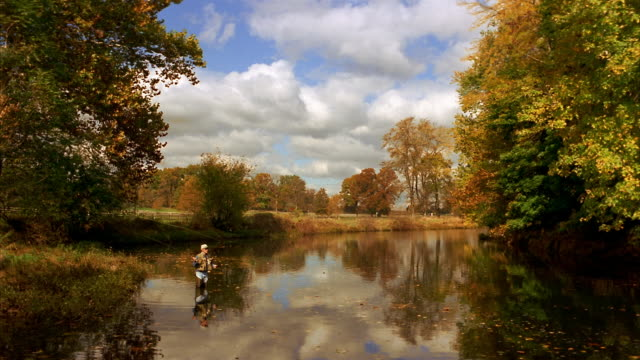 wide shot man fly fishing in stream in autumn / clouds and trees reflecting off surface of water - angeln stock-videos und b-roll-filmmaterial