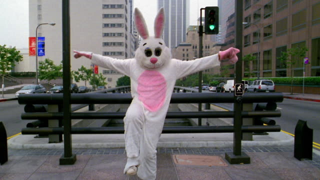 wide shot man in rabbit costume standing in karate stance before kicking / los angeles, ca - rabbit costume stock videos & royalty-free footage