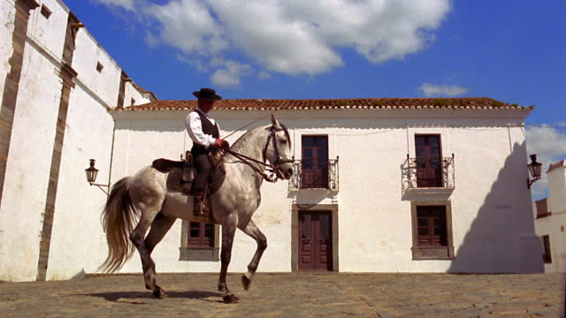 wide shot man on horse doing dance-like movements (dressage) in courtyard / monsaraz, portugal - herbivorous stock videos & royalty-free footage