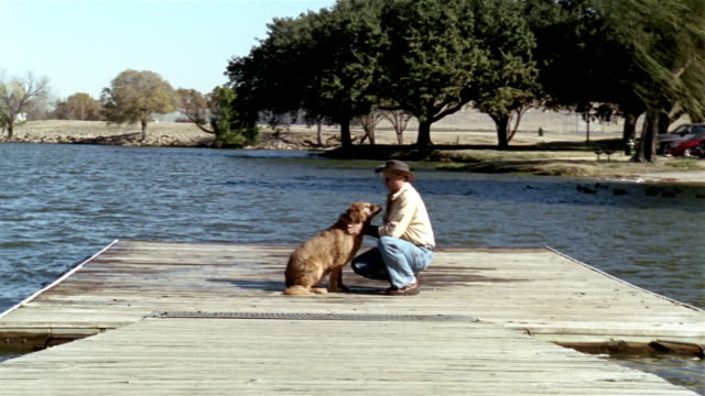 wide shot man petting and playing with golden retriever on pier - kniend stock-videos und b-roll-filmmaterial
