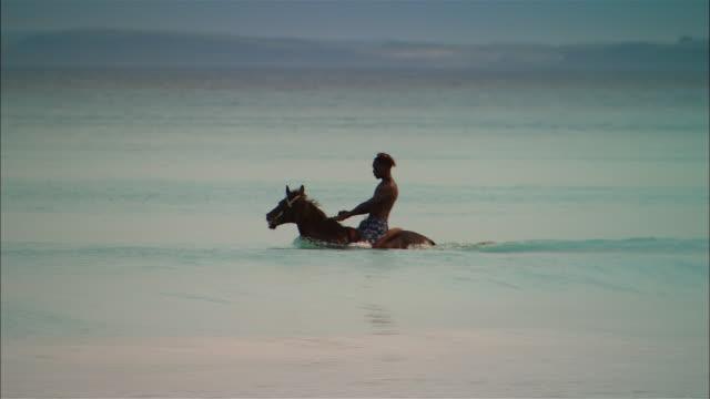 Wide shot Man riding horse in ocean/ Harbor Island, Bahamas