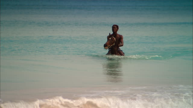 wide shot man riding horse in ocean/ harbor island, bahamas - afro caribbean ethnicity stock videos and b-roll footage