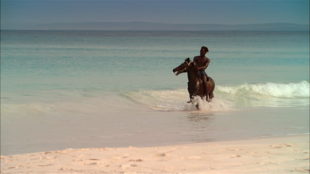 vídeos y material grabado en eventos de stock de wide shot man riding horse on beach/ harbor island, bahamas - equitación