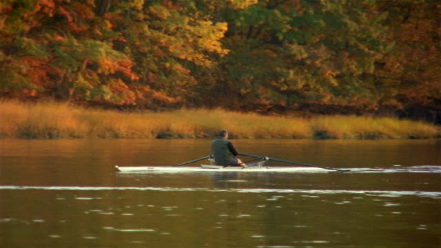 Wide shot man sculling on lake surrounded by trees / Autumn / Yarmouth, Maine