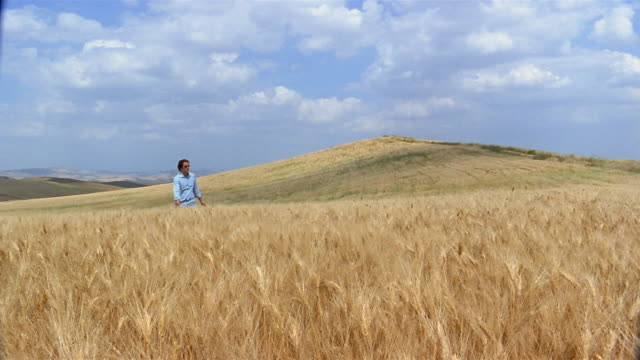 wide shot man walking through field / sicily, italy - one mid adult man only stock videos & royalty-free footage