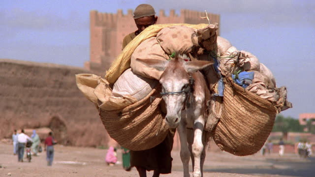 Wide shot man walking with donkey carrying large bags in market square / Marrakesh, Morocco