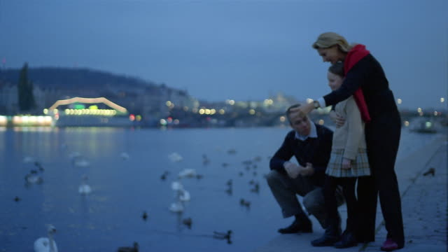 wide shot man, woman and girl by the bank of charles river / watching ducks + swans / prague - prague stock videos & royalty-free footage