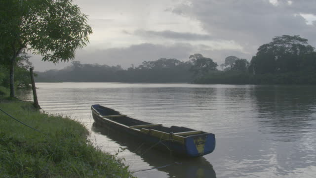 vidéos et rushes de wide shot of a boat moored on a riverbank - république du panama