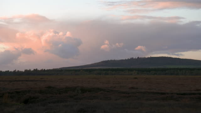 wide shot of a bog at sunset - bog stock videos & royalty-free footage