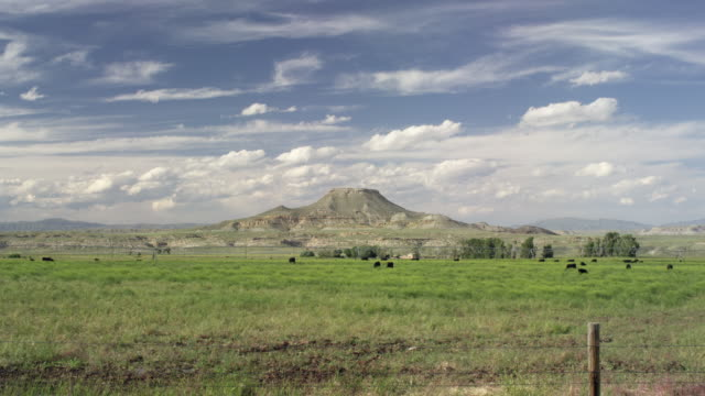vidéos et rushes de wide shot of a butte in wyoming in real time with cattle - piton rocheux