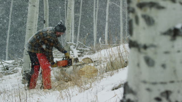 wide shot of a caucasian man in his thirties with a beard cutting a wooden aspen log with a chainsaw on a snowy winter day in the forest - cappotto invernale video stock e b–roll
