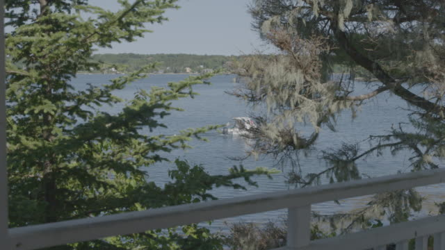 Wide shot of a motorboat behind trees in Boothbay Harbor