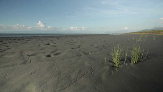 wide shot of a mud flat while a helicopter is flying in the sky - mud flat stock videos and b-roll footage