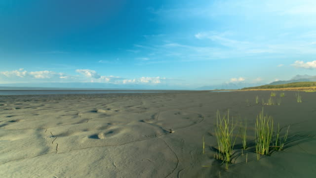 wide shot of a mud flat with mountains in the background - mud flat stock videos and b-roll footage