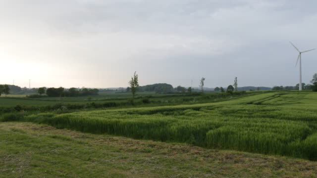 Wide shot of a north German landscape with grass and corn fields in the foreground while wind turbines can be seen in the background