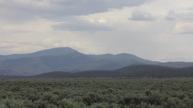 wide shot of a sage field and mountains in arizona - セージブラッシュ点の映像素材/bロール
