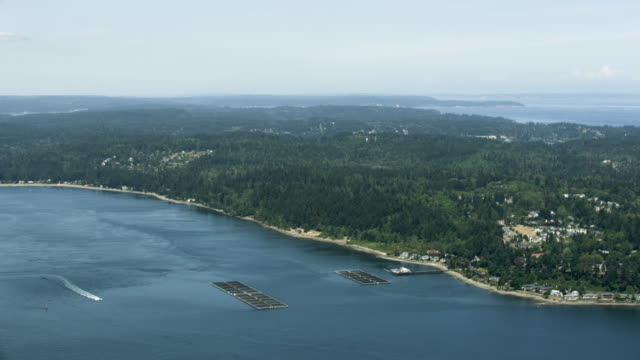 Wide shot of a salmon farm near Bainbridge Island