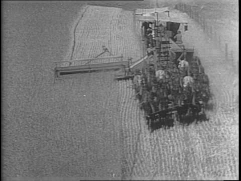 wide shot of a threshing machine pulled by mules moving through a large wheat field / closer view of mule drawn threshing machine / man sitting on... - threshing stock videos & royalty-free footage