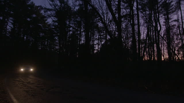 wide shot of a vehicle driving on the road surrounded by a forest at dusk - atmosphere filter stock videos & royalty-free footage