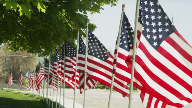 vidéos et rushes de wide shot of american flags lining street / payson, utah, united states - payson