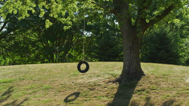 Wide shot of an empty, lonely tire swing hanging from a tree in a park.