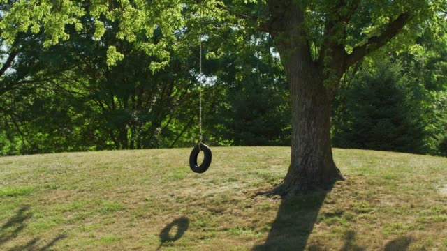 wide shot of an empty, lonely tire swing hanging from a tree in a park. - tyre swing stock videos & royalty-free footage