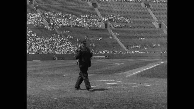wide shot of baseball umpire watching baseball players playing game on baseball diamond - 野球用グローブ点の映像素材/bロール