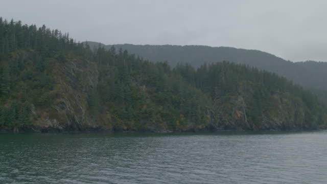 Wide shot of cliffs and pine trees on the shore of Resurrection Bay