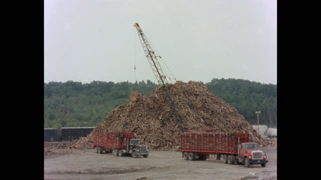 wide shot of crane picking up bundle of wooden logs from truck and unloading it in lumberyard, maine, usa - forestry industry stock videos & royalty-free footage