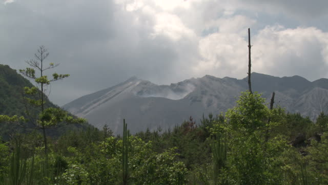 Wide shot of crater of Sakurajima volcano with scrub land in foreground, Japan