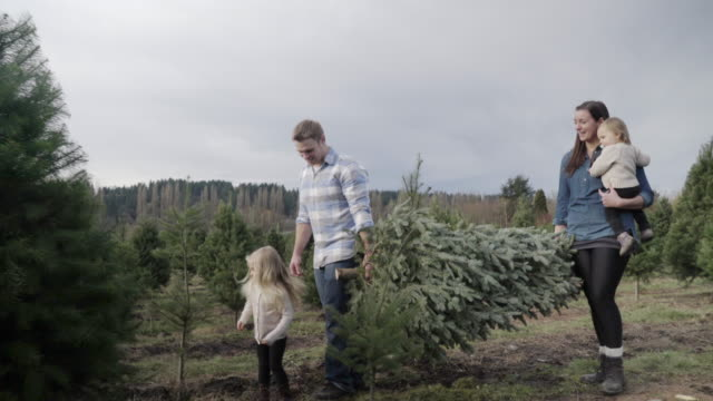 Wide shot of family carrying a pine tree at a tree farm