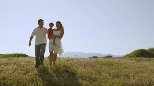 wide shot of family walking through meadow/marbella region, spain - 40 44 years stock videos & royalty-free footage