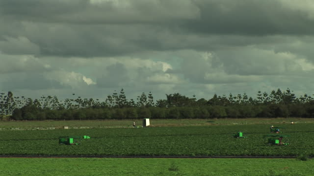wide shot of farm vehicles and machinery in field - agricultural cooperative stock videos and b-roll footage