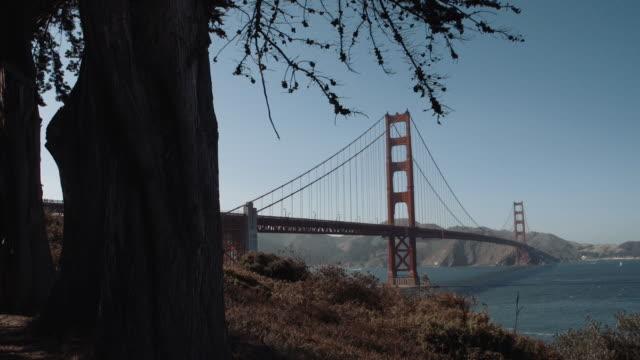 wide shot of golden gate bridge from park - suspension bridge stock videos & royalty-free footage